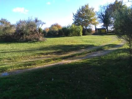 Terrein 2