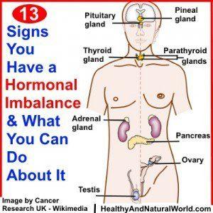 Hormonal Imbalance 34