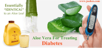 Aloe Vera For Treating Diabetes