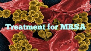 Treatment for MRSA 31