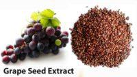 grape-seed-2