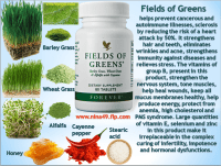 fields of greens benefit