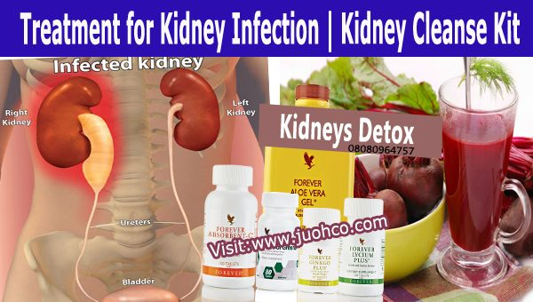 Treatment for Kidney Infection | Kidney Cleanse Kit