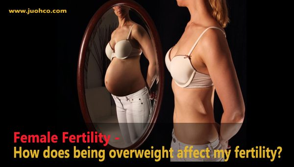 Female Fertility - How does being overweight affect my fertility?