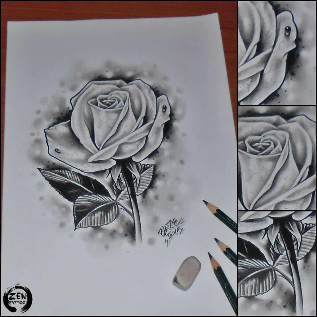 Gambar Bunga Mawar Dari Pensil Gambar Bunga Mawar