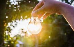 Créditos:  lovelyday12 / Shutterstock.com