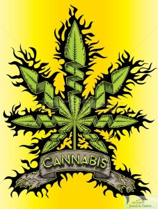 Specialistii sunt IN ALERTA: Tratamente cosmetice pe baza de cannabis 1