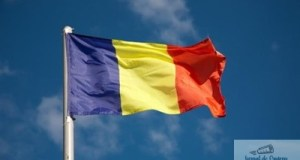 Ziua Drapelului National sarbatorita la Craiova doar cu 2 culori ! 15