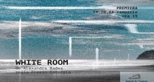 White Room – prima premiera a anului, la Teatrul National din Craiova 1