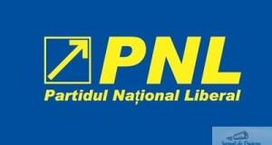 PNL, pregatit sa-l duca pe Dragnea la CCR! 15