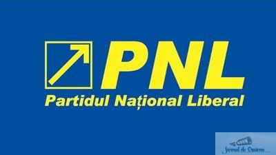 PNL, pregatit sa-l duca pe Dragnea la CCR!