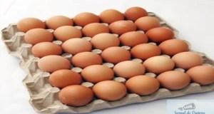 Peste 35.000 de oua contaminate cu Fipronil au intrat pe piata, in Olt 15