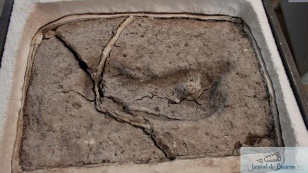 O amprenta de picior uman descoperita in Chile, cea mai veche de pe teritoriul celor doua Americi 2