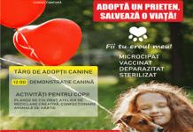 Targ de adoptii canine duminica, in Parcul Romanescu