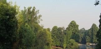 Salubritate Craiova : Dezinsectie aeriana, in perioada 11-12 iulie 2020