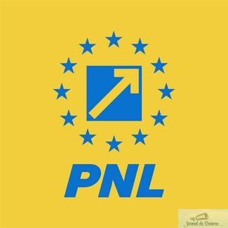 Viza de flotant: strategia PSD de a frauda alegerile în Dolj