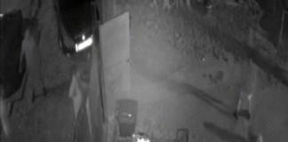 VIDEO : Scene violente într-o gospodărie din județul Dolj.