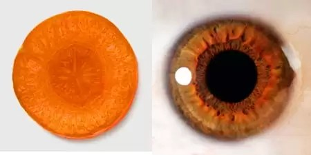 Imagini pentru nucile seamana cu creierul