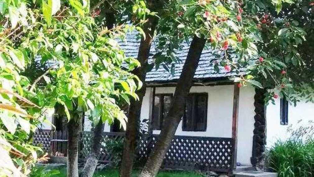 Casă tradiţională din Muscel, donată Muzeului Goleşti 1