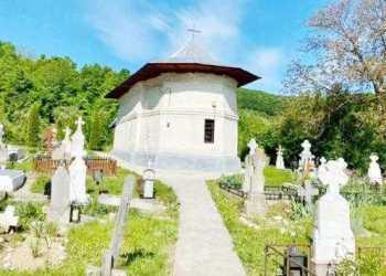 Bisericile Furnicoşi şi Valea Bradului din Mihăeşti, monumente istorice de interes naţional 3