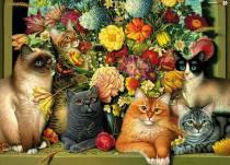 pisici si flori