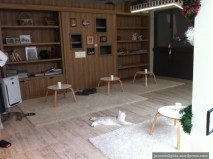 Interior; Purr Cat Café Club, Bangkok