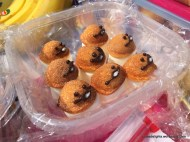 Fungi; Ngong Ping picnic