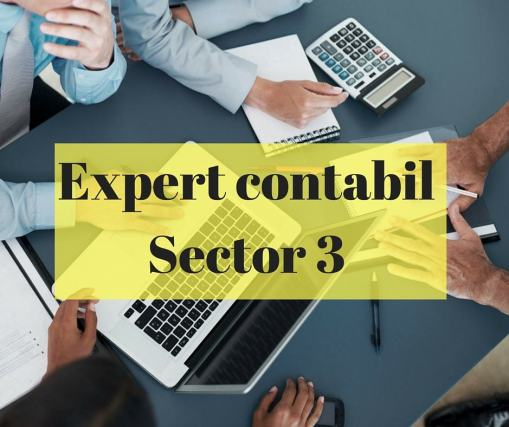 Expert contabilSector 3