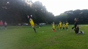 goalkeeper coaching in northwich