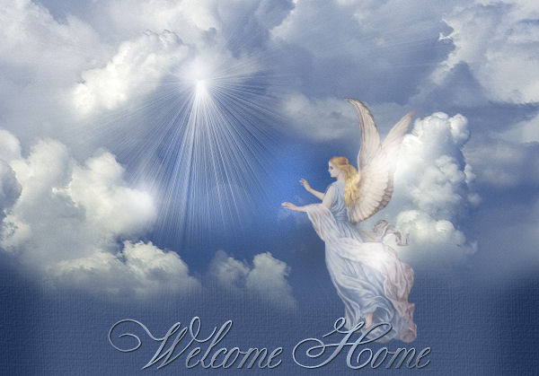 List Of Synonyms And Antonyms Of The Word Heavenly Angel