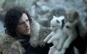 Direwolf -Just About Tv
