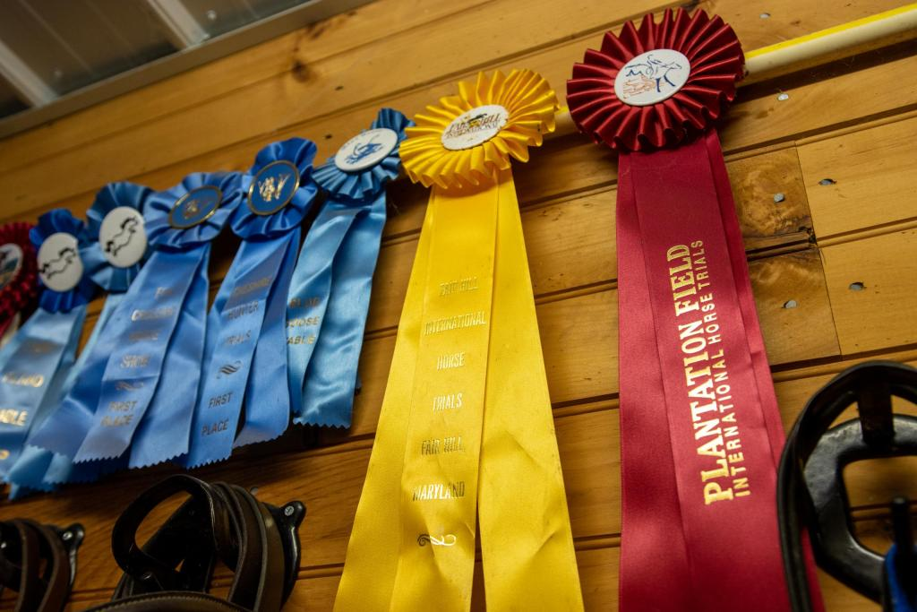 Vigil's ribbons from off-the-track competitions hang on the wall in the Justa Farm stables.