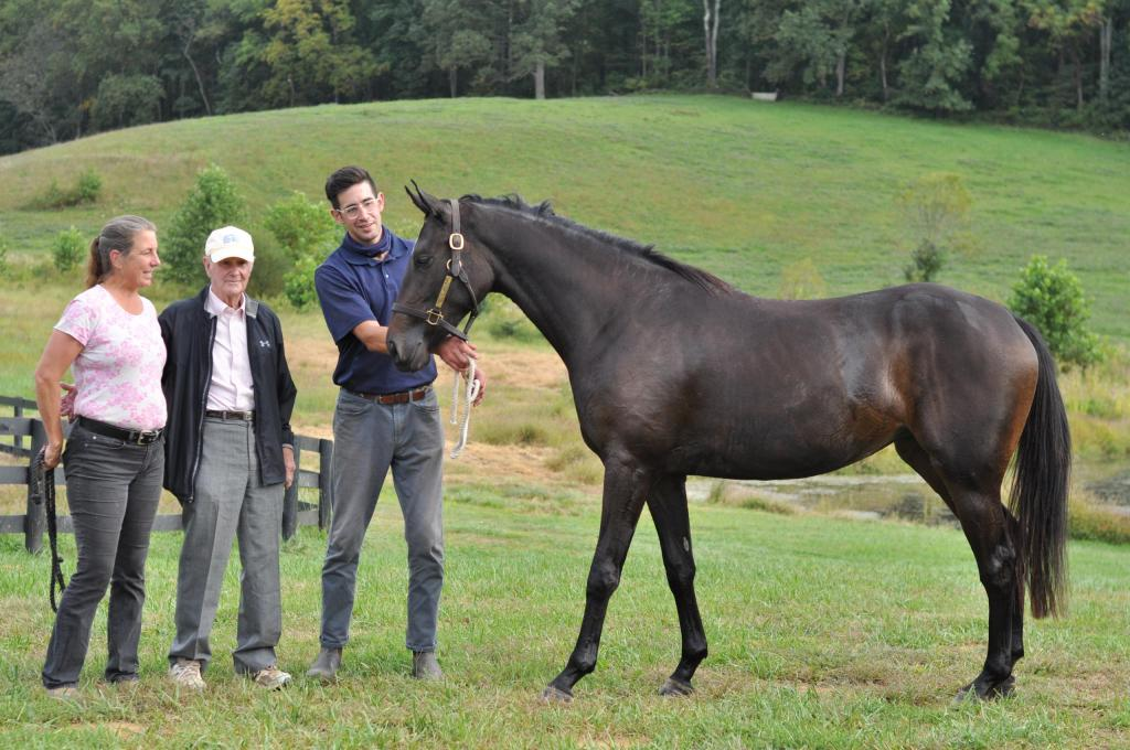 Contact Justa Farm and learn about becoming a partner, owning a horse, and more.