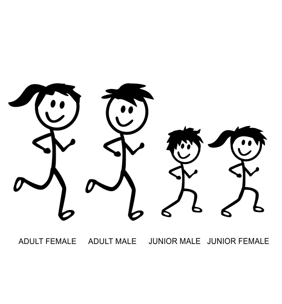 family sticks all family