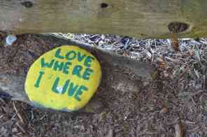 Painted rocks at our campsite