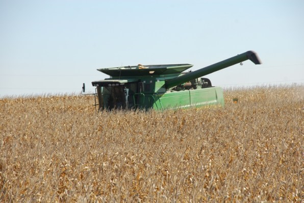 Harvesting corn in 2010