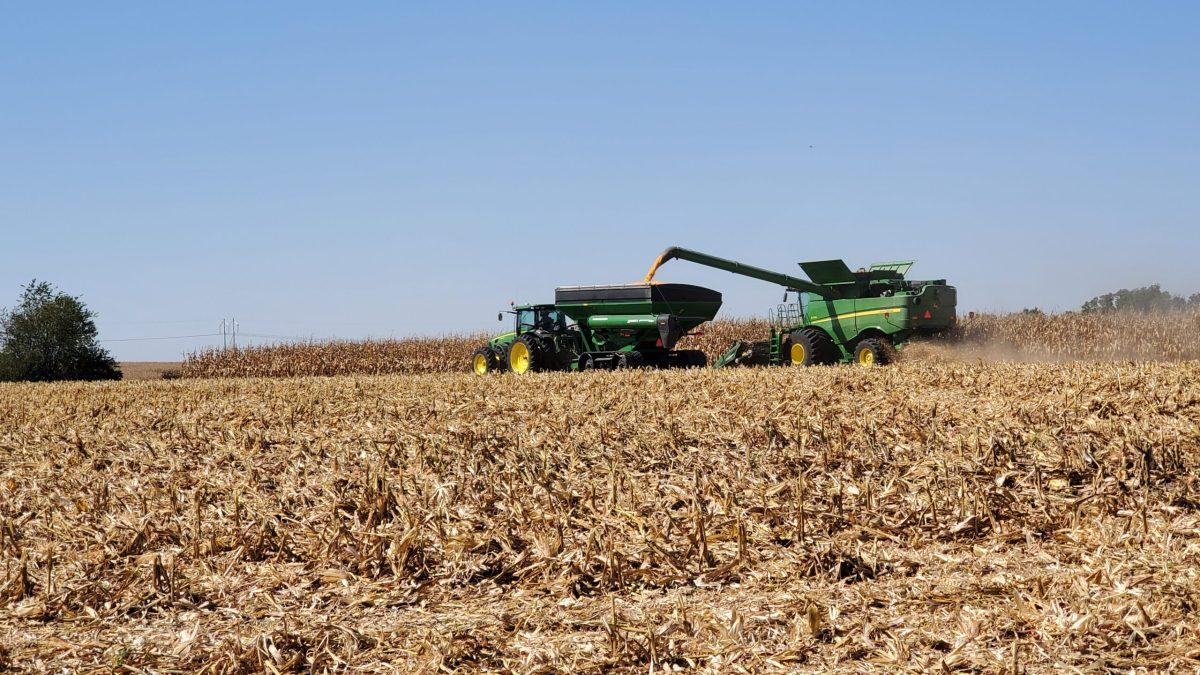 Combining Corn Soloman