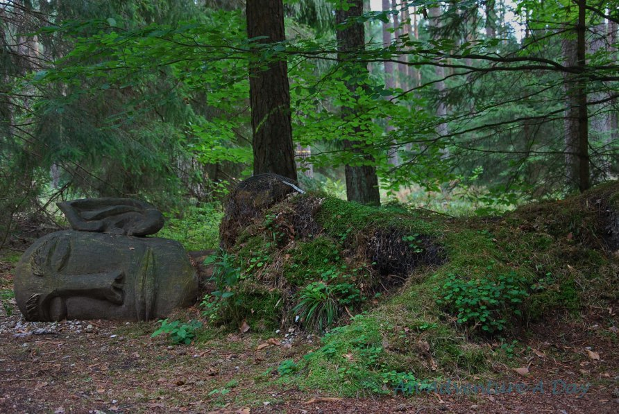 The still woods of the Kunstwald provides the perfect resting spot for this giant.