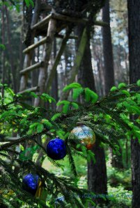 Hunting Stands are a familiar sight in German forests. Decorated Christmas trees? Not so much.