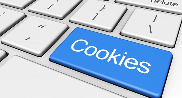 Machine Learning system needs a cookie.