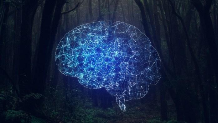 Building artificial intelligence: Reward is not enough – TechTalks