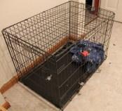 locked crate full