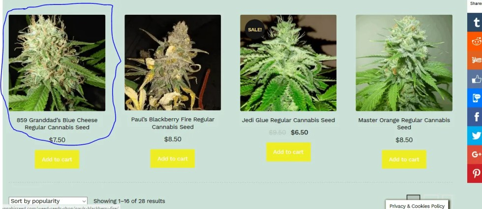 Click to Get More Information On This Strain