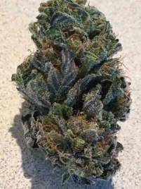 Dried Cannabis Flower