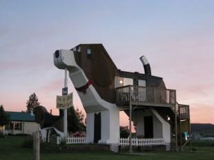 Dog-Bark-Inn-2-MAYBE-1024x768