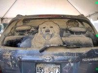 scott-wade-dust-painting-art