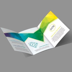 444 x 210 printed trifold brochure