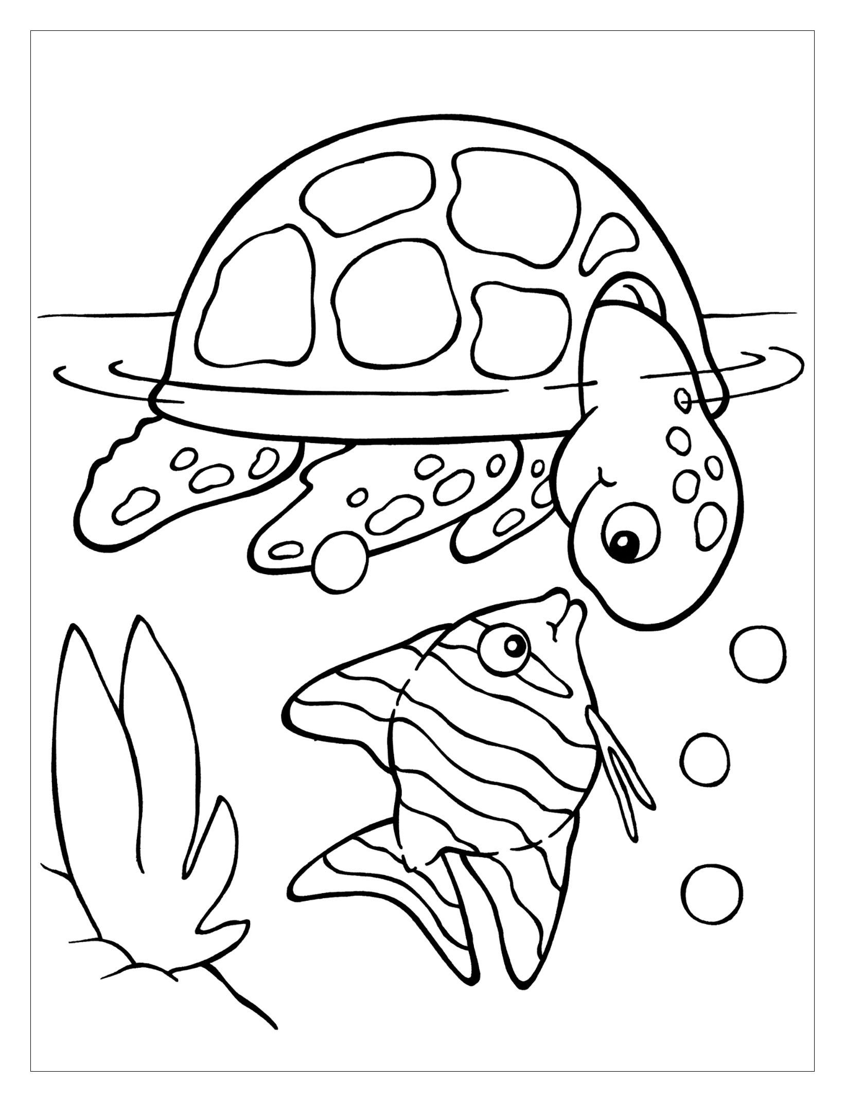 Easy Sea Turtle Coloring Pages Novocom Top