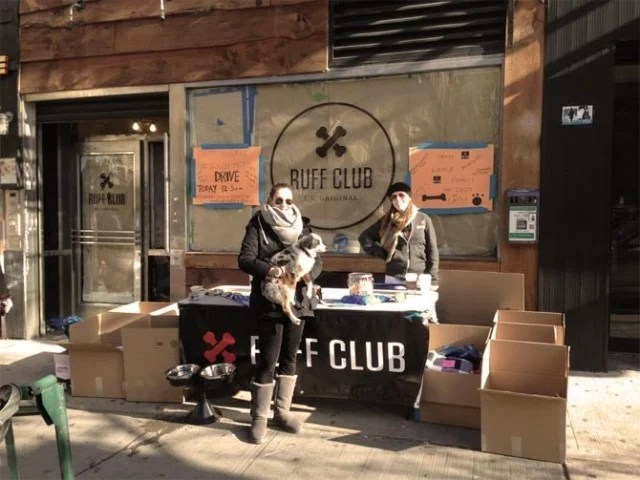 Ruff Club Store