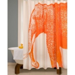 The orange elephant in the bathroom